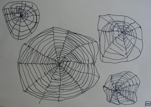 Struktura pavučiny - černý centrofix