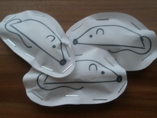 Ukázka bílých myšek.