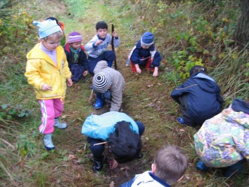 Děti zkoumají, co roste v lese a jaký materiál by se hodil na stvabu chaloupek.