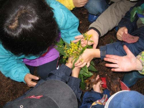 Děti zjistily, že v lese mohou najít i květiny.