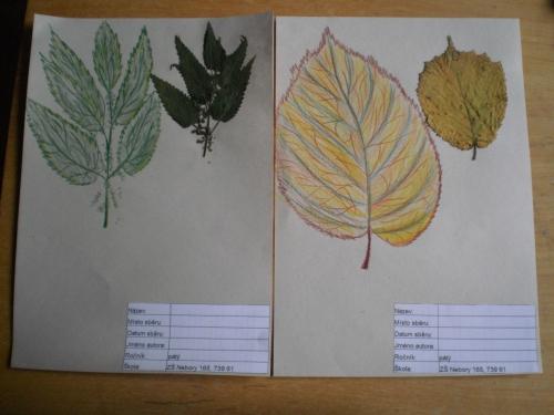 První listy do herbáře