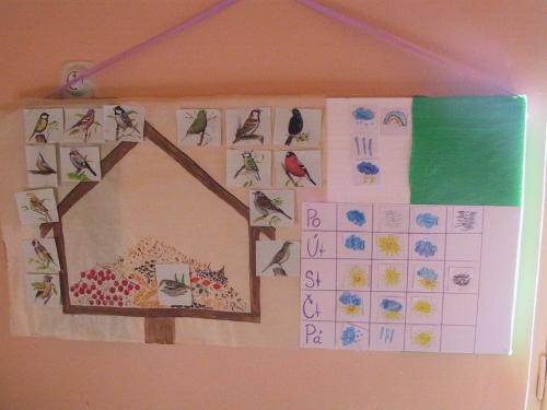 Okna mateřské školy děti pozorovaly zda létají do krmítek